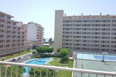 Appartement à Peñiscola - Excellent appartement avec toutes les...